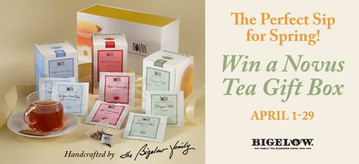 bigelow tea novus tea contest