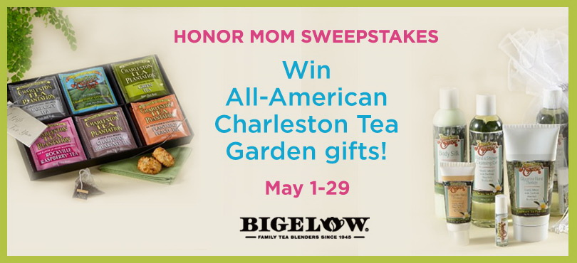 bigelow tea charleston tea sweeps