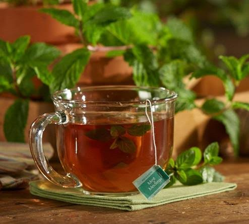 bigelow tea mint medley