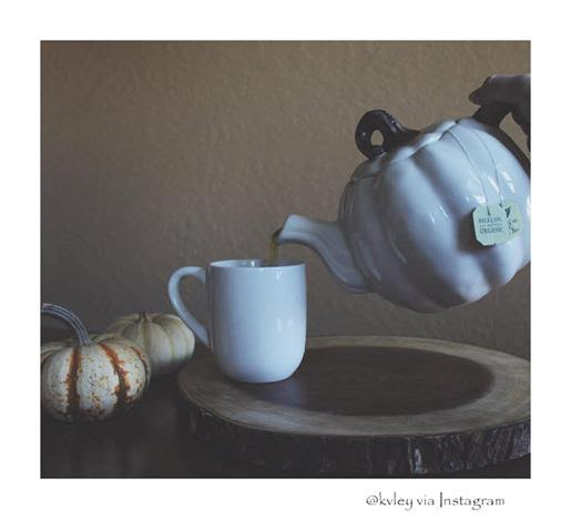 bigelow tea tea pots list