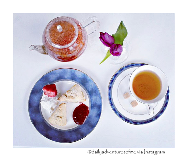 bigelow tea recipes